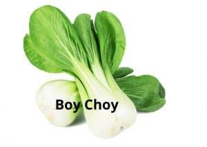 Boy Choy