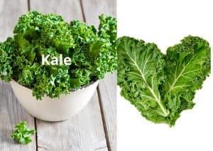 Kale is King