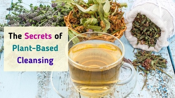 The Secrets of Plant Based Cleansing