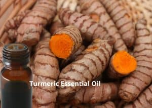 Turmeri Essential oil